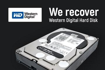 Western Digital, Sabit Disk Fabrikasını Kapatıyor